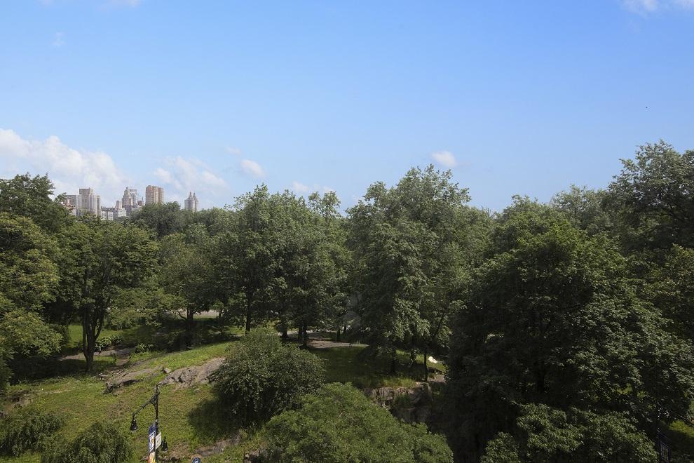 150 Central Park South Central Park South New York NY 10019